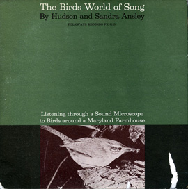 The Birds World of Song