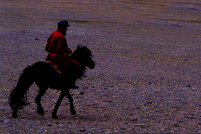 Musical Hooves on the Steppes: The Morin Huur of Mongolia