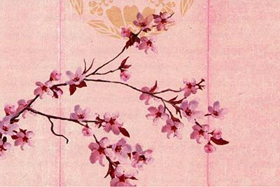 Soran Bushi: Exploring Japanese Work Song